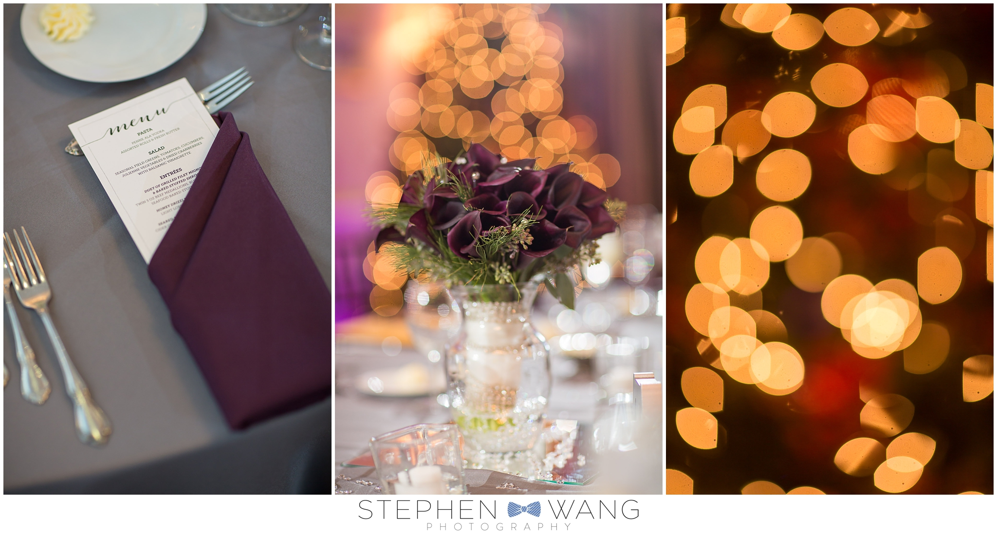 Stephen Wang Photography winter wedding connecticut east haddam riverhouse haddam ct middletown inn christmas wedding photography connecticut photographer-01-15_0030.jpg