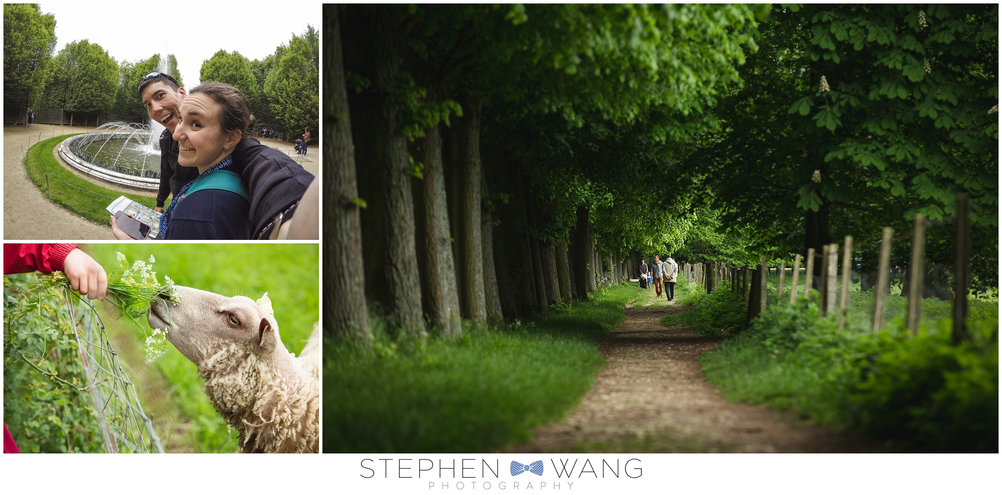 In the gardens of Versailles.  A cute walking path with sheep right next to us, and a perfect tree canopy made wandering around a joy.