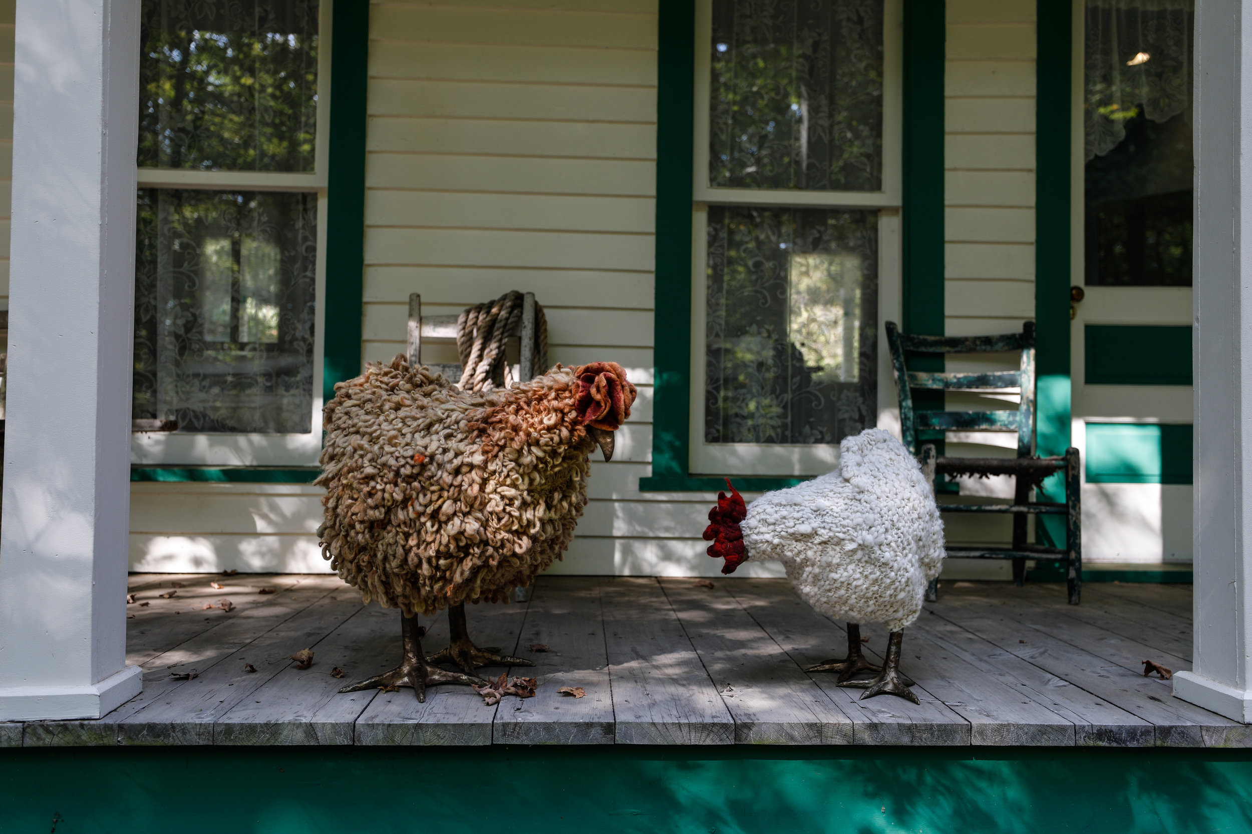 Chicken-9473.jpg