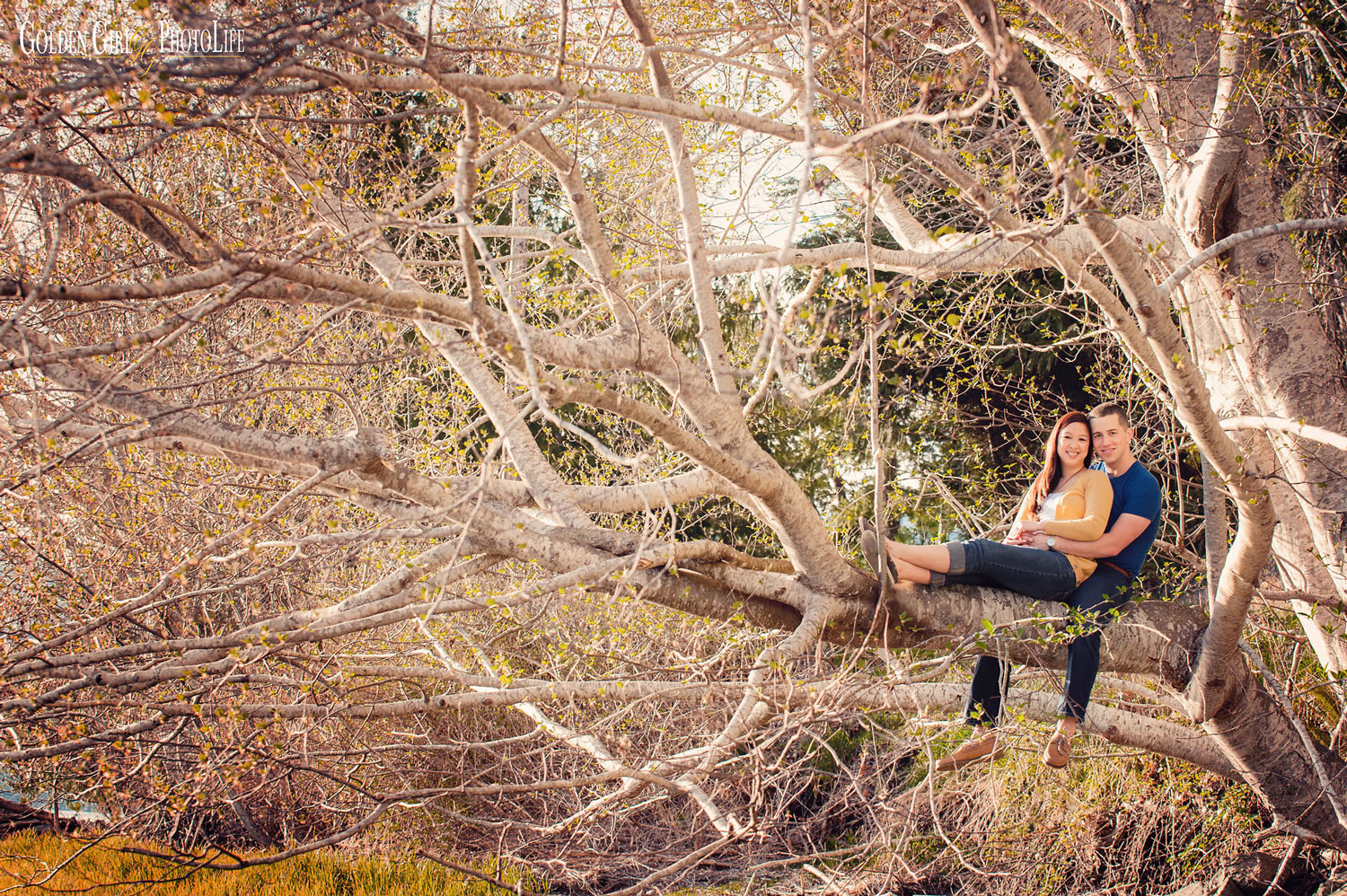 seattle--wedding-photographer-best-of-king5-engagement-session-in-tree-beach.jpg