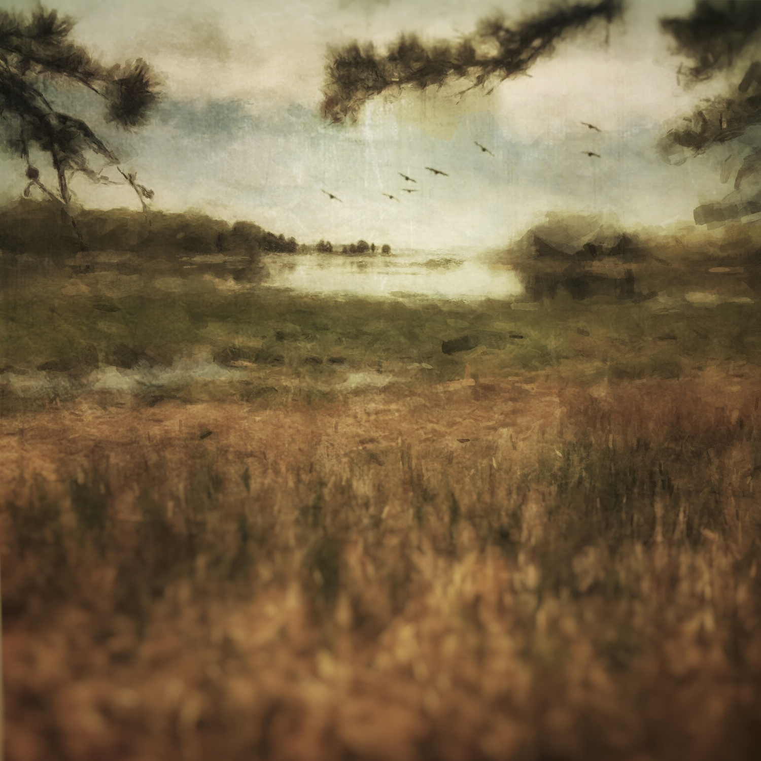 Birds on the Tides by Rebecca Bruyn