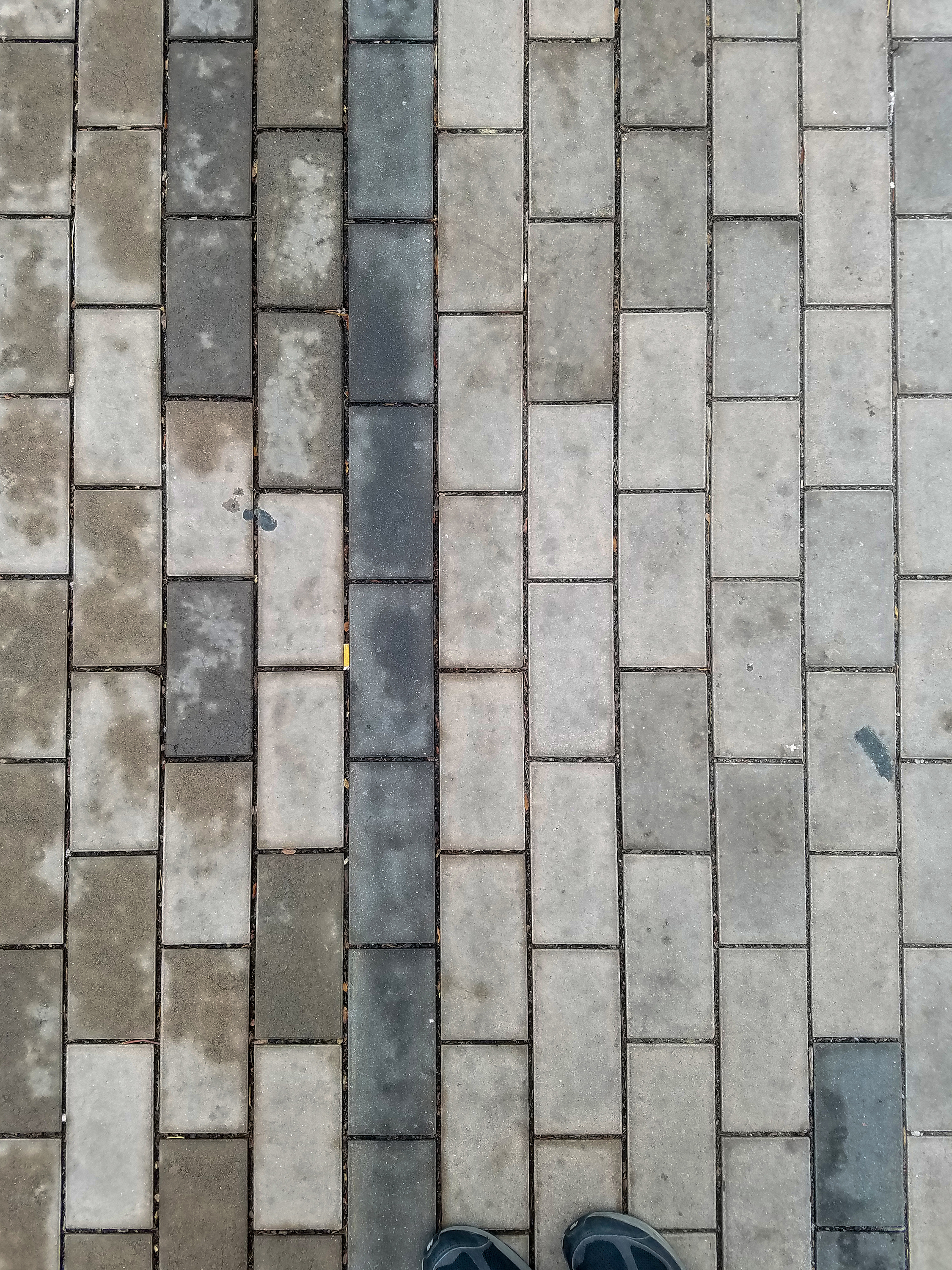 The main pathways leading from the Colfax at auraria station into the campus have brick patterns that are parallel with the foot-traffic. Most of the bricks are of a lighter tone, but some are darker and more blue in hue. Debris and discarded cigarettes can sometimes be seen between the joins.