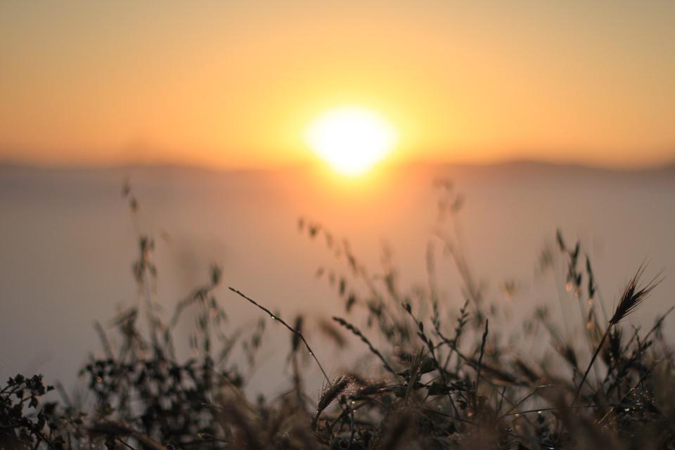 prefumo-sunrise-8.jpg