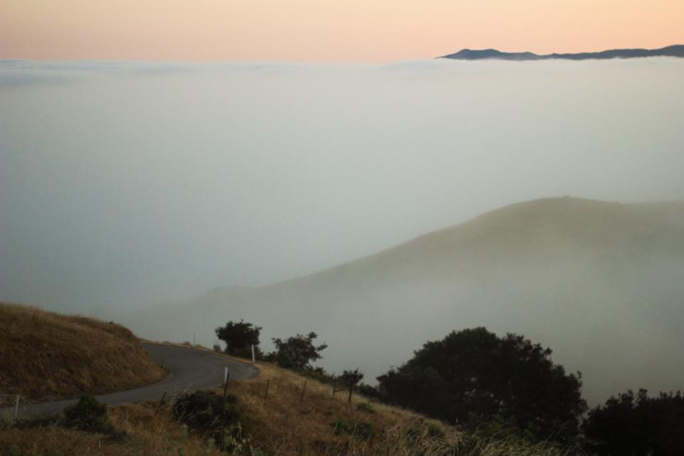 prefumo-sunrise-3.jpg