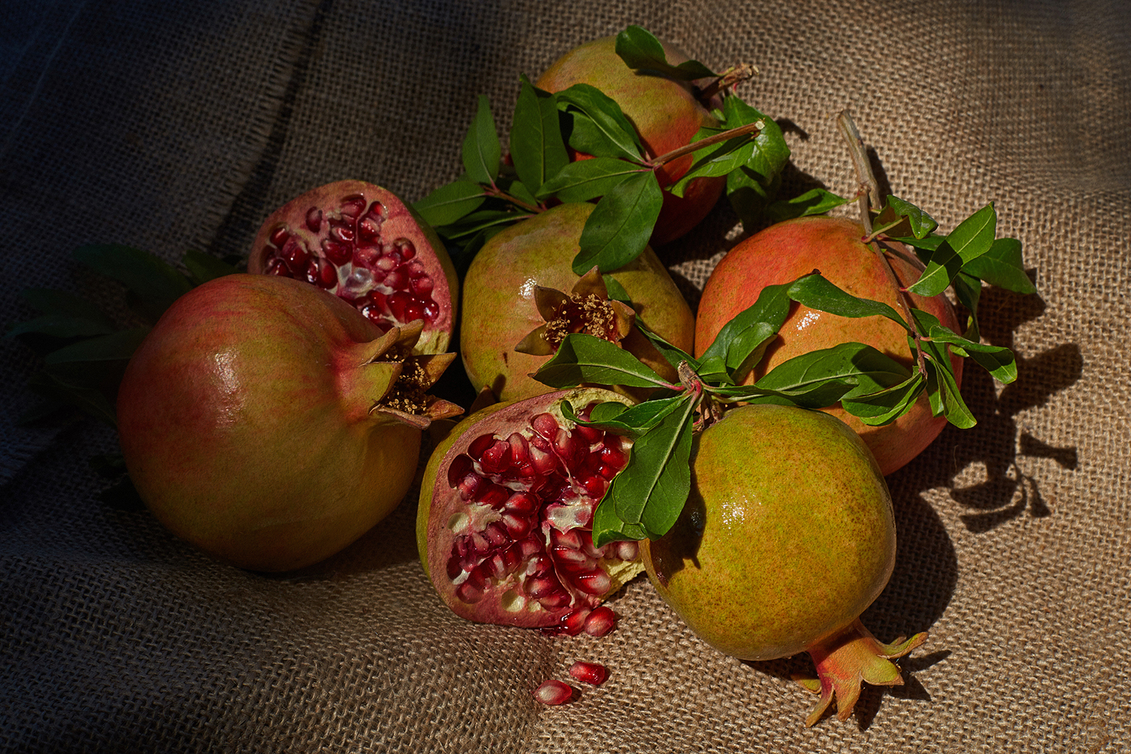 pomegranates studio sophy