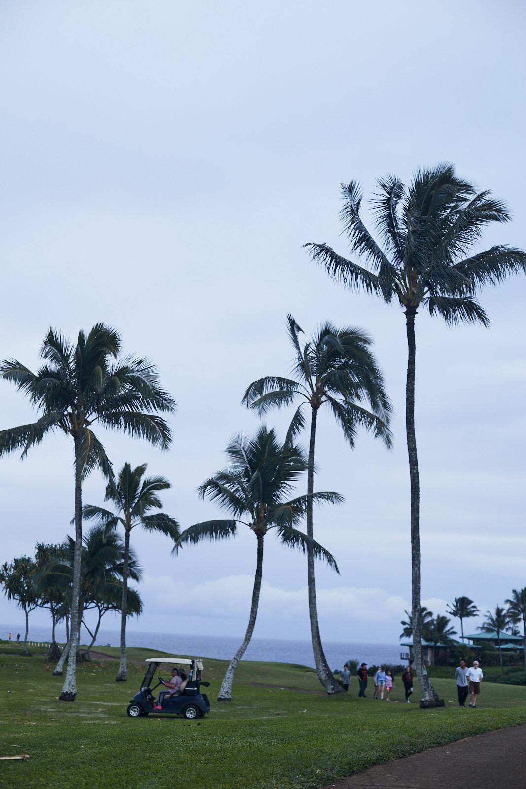 studio-sophy-hawaii-sophia-liu-photography-IMG_1061x1600.jpg