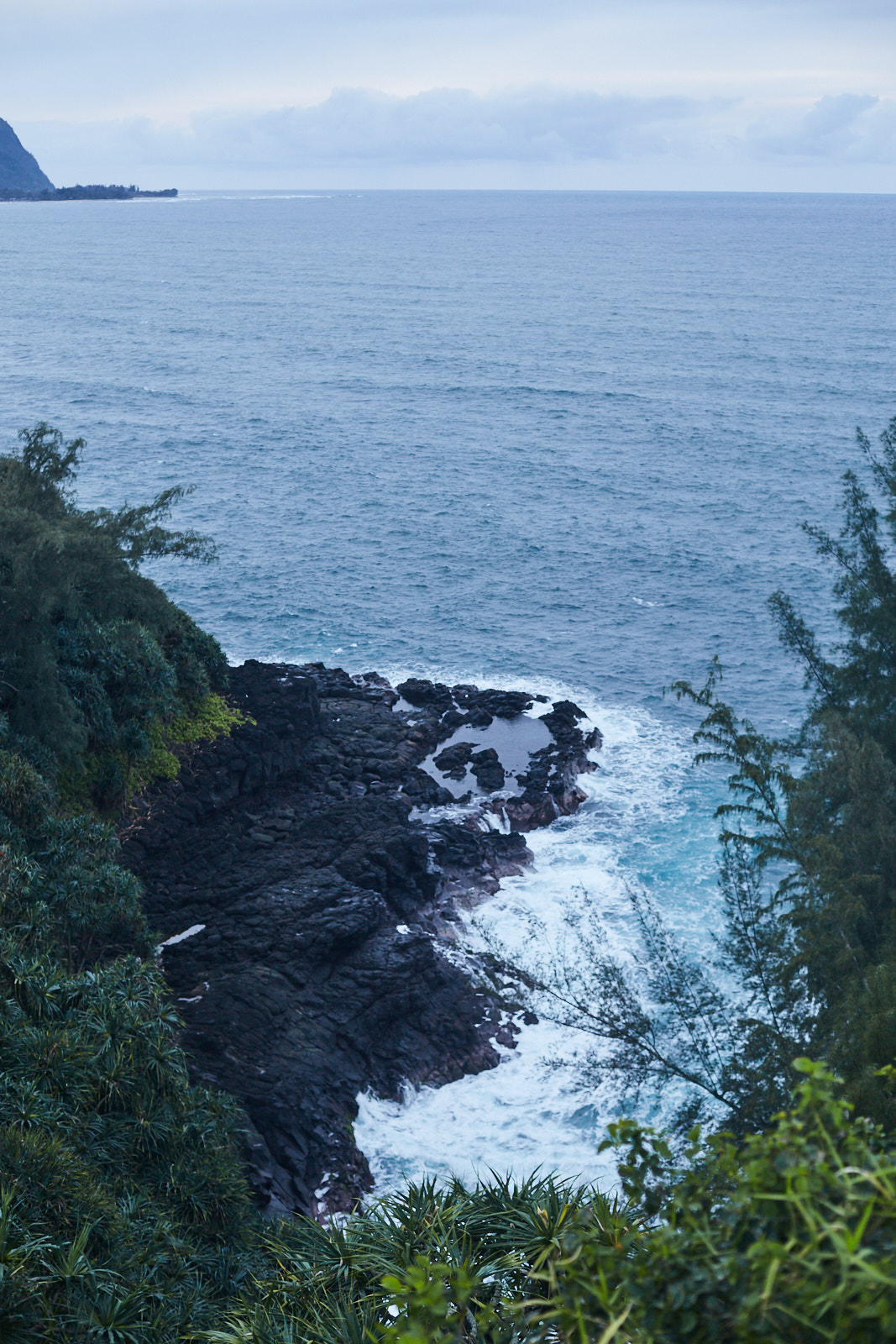 studio-sophy-hawaii-sophia-liu-photography-IMG_1084x1600.jpg