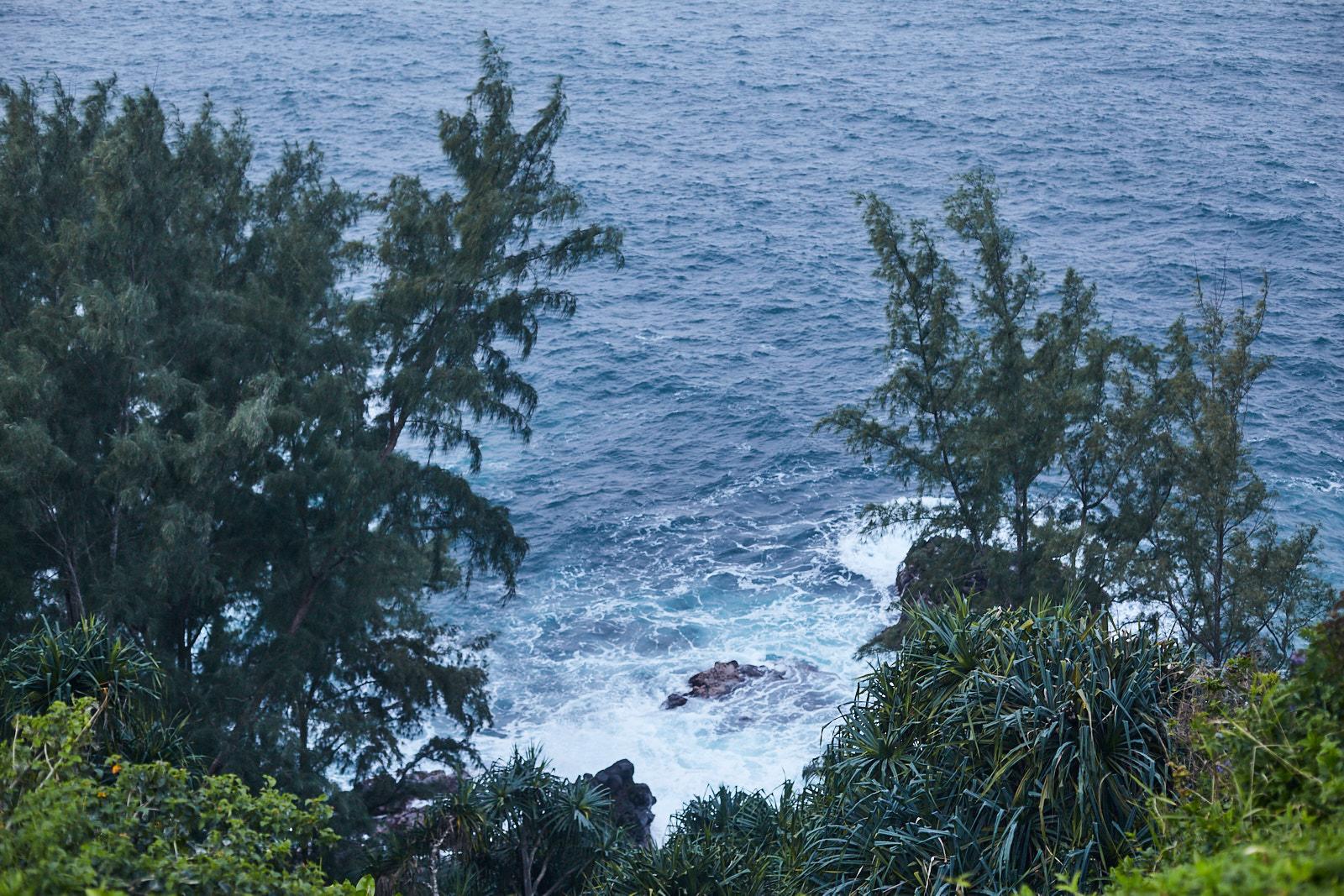 studio-sophy-hawaii-sophia-liu-photography-IMG_1063x1600.jpg