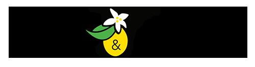 le-lemon-wordmark copy.png