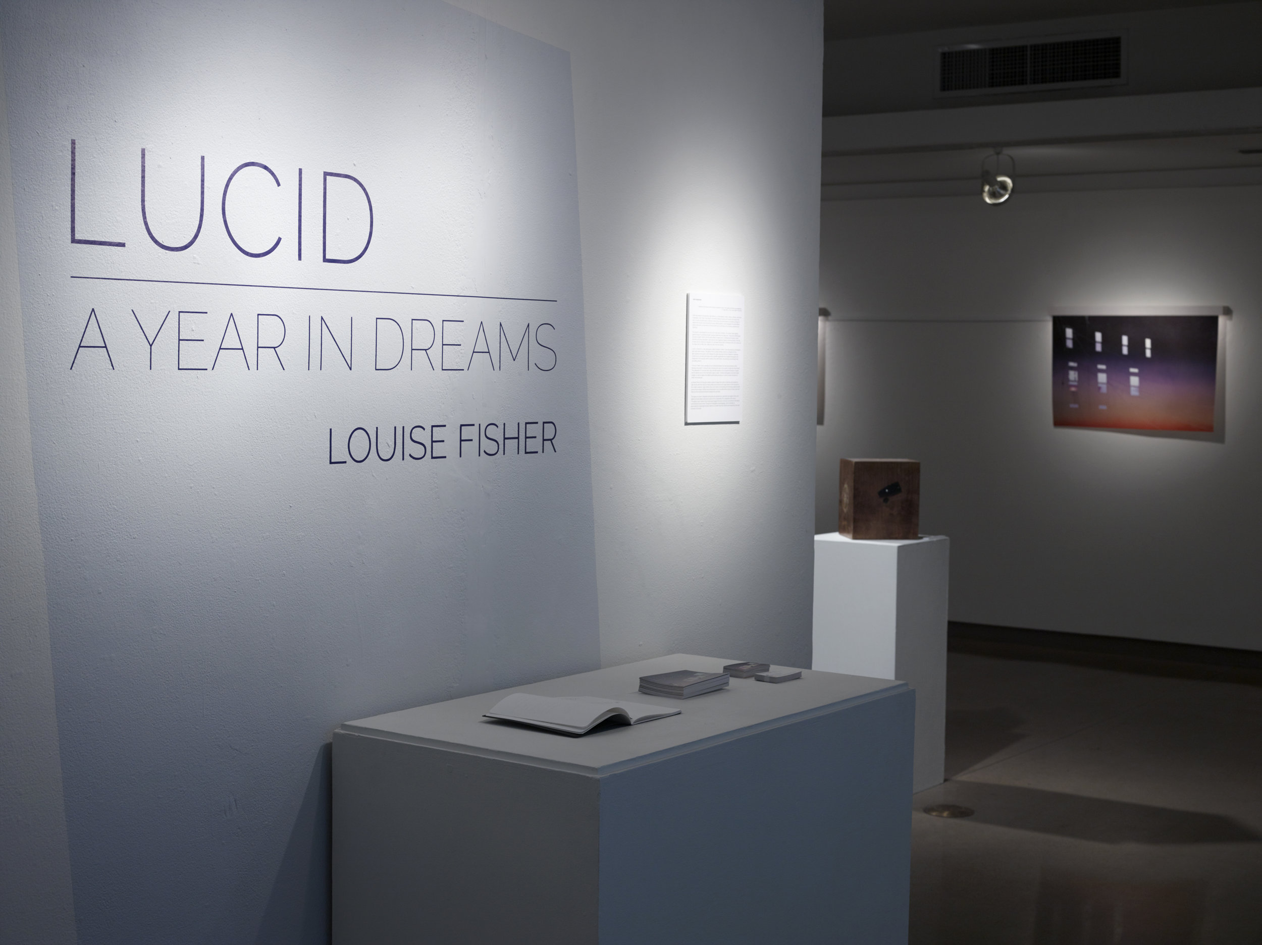 Lucid: A Year in Dreams