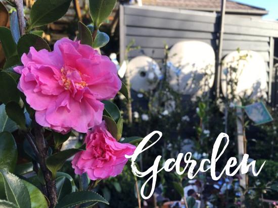 Garden-550x412.jpg