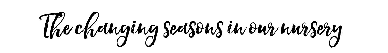 changing-seasons-gallery-header--1500x342.jpg