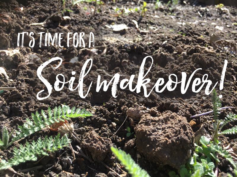 Soil--Blog-800x600.jpg