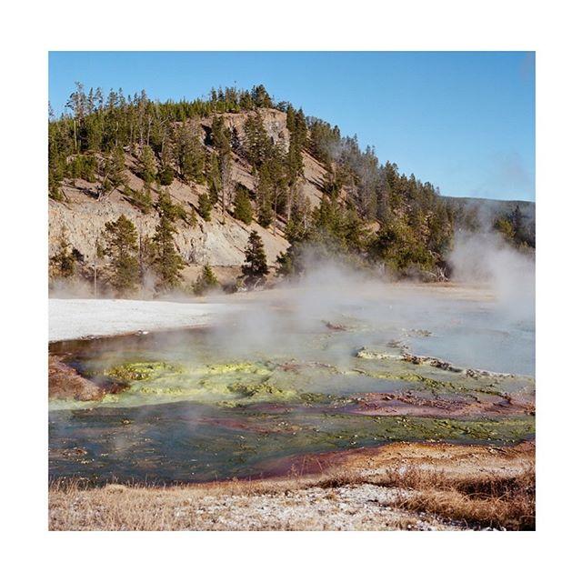 Yellowstone . . . . .  #gominimalmag #wyoming #yellowstonenationalpark #grandprismaticspring  #somewheremagazine  #taintedmag #hasselblad500cm #grandprismaticspring #ektar100 #ishootfilm #minimalist#imaginarymagnitude #paperjournalmag #burnmagazine #myfeatureshoot #weltraumzine #oksfieldmag #dazedandexposed #mytinyatlas  #rentalmag  #anotherplacemagazine #minimalzine @somewheremagazine #artwista_gallery #ignant #fireholeriver #lensculture #filmphotographic #palepalmcollection #hippomag #photo_collective #rentalmag