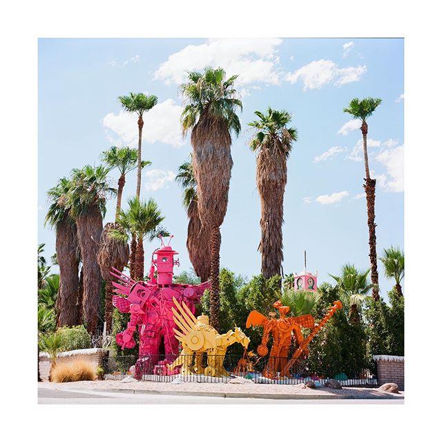 Robolights . . . . #palmsprings #southerncalifornia  #desert #robolights #hasselblad500cm #ektar100 #kodak #hippomag  #gominimalmag  #somewheremagazine  #taintedmag #ishootfilm #imaginarymagnitude #paperjournalmag #burnmagazine #weltraumzine #oksfieldmag #vintagestores #dazedandexposed #mytinyatlas  #rentalmag  #anotherplacemagazine #minimalzine  #artwista_gallery #lensculture  #millennium_images #palepalmcollection #photo_collective #rent