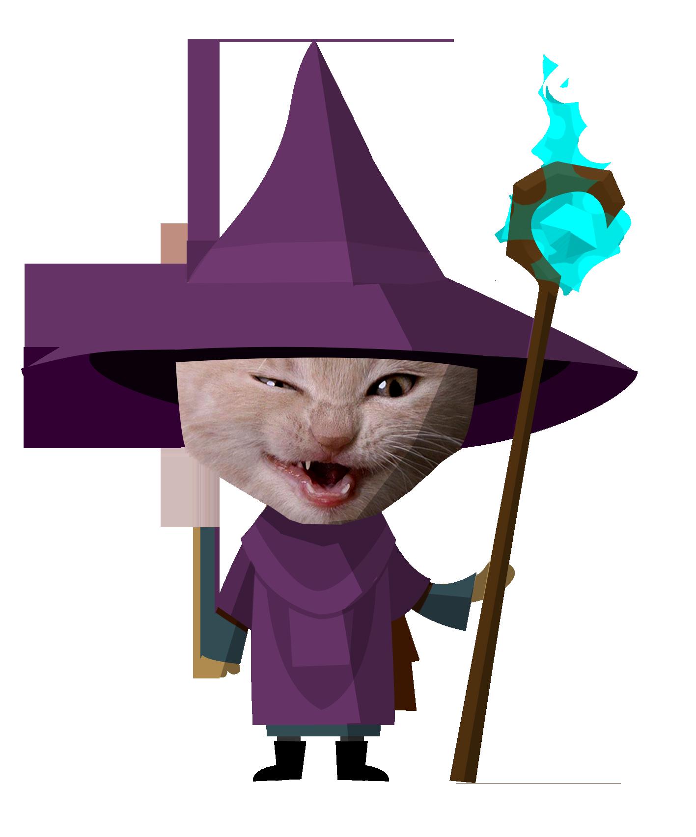 kitten-wizard-flat-copy.png