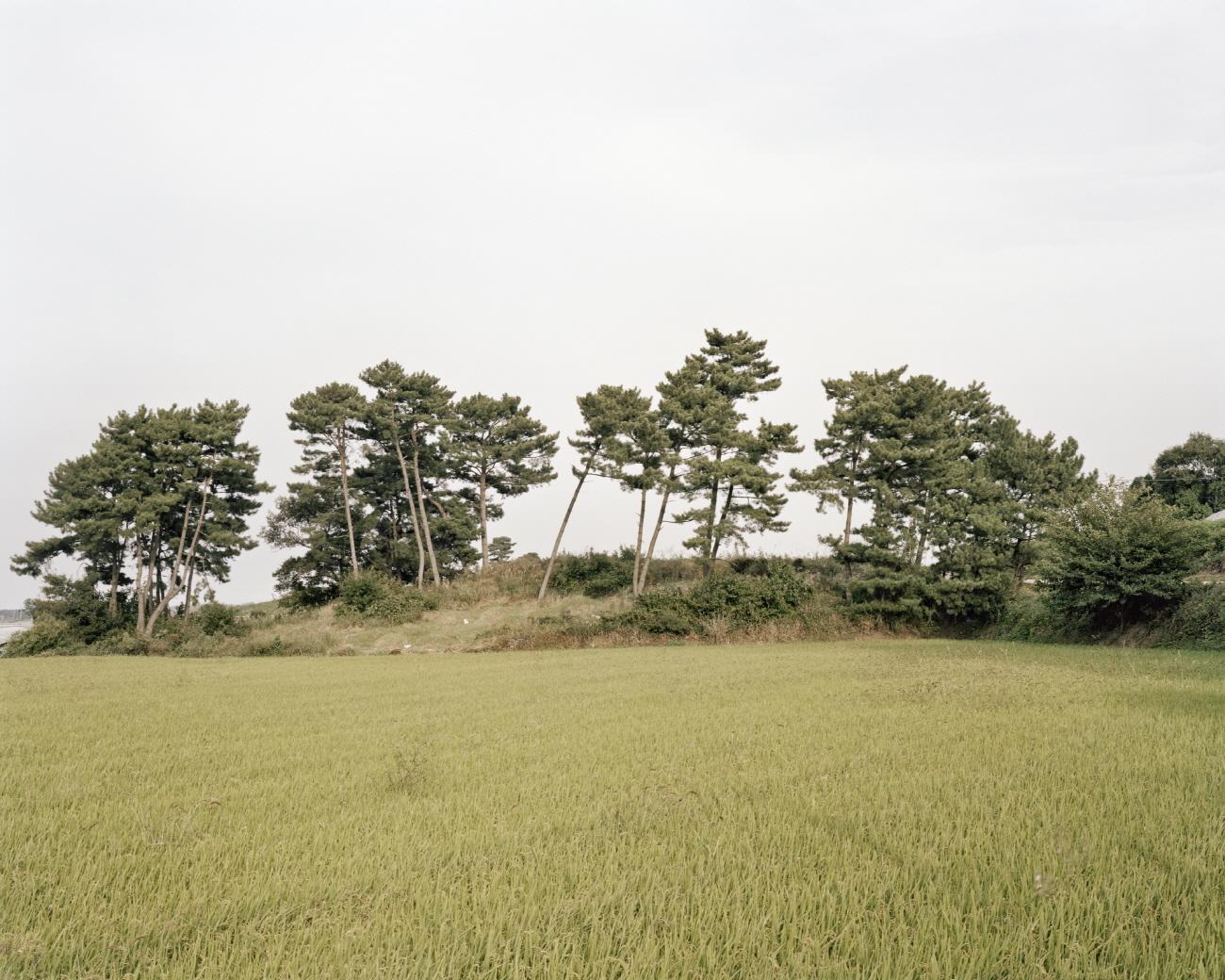 32 터_ 지속된 시간_ 전라북도 김제시_ 2011.jpg