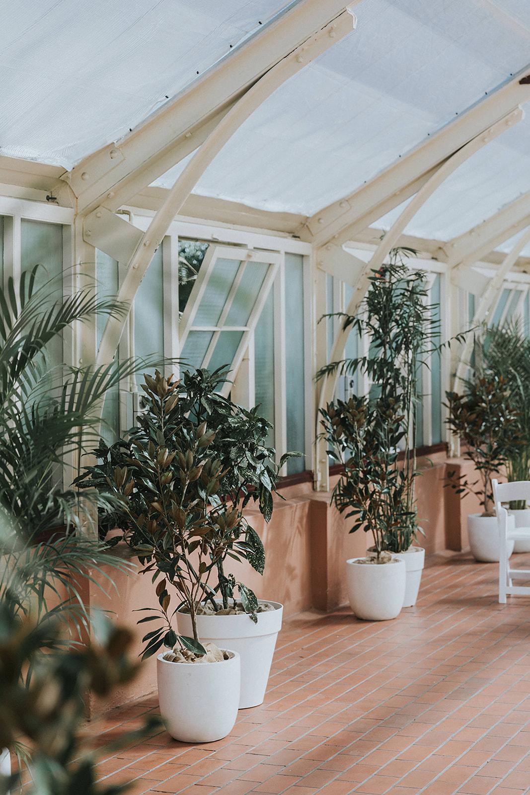 Palm-House-Botanic-Gardens-Wedding-Claire-Ron_337.jpg