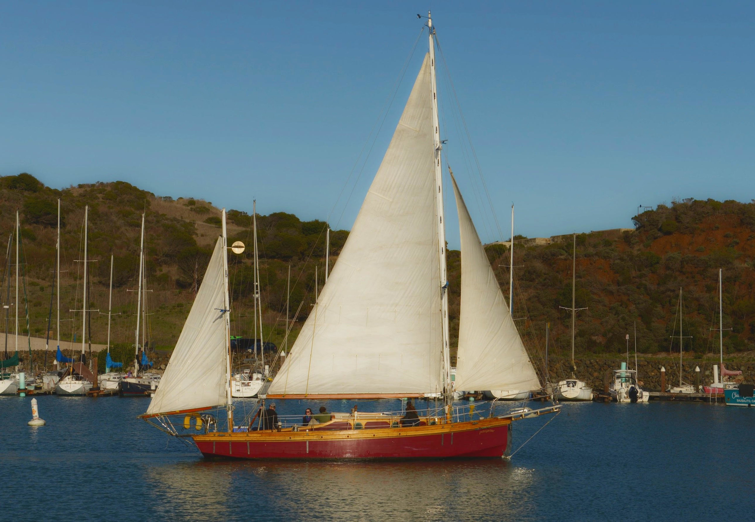 PEREGRINE   Peregrine is a 45 foot classic mahogany yawl built in the 1940s. She is a smooth stylish ride on San Francisco Bay. She features a terrific menu from our grill if lunch is in your plans.   Length:  45 feet  Number of Passengers:  6