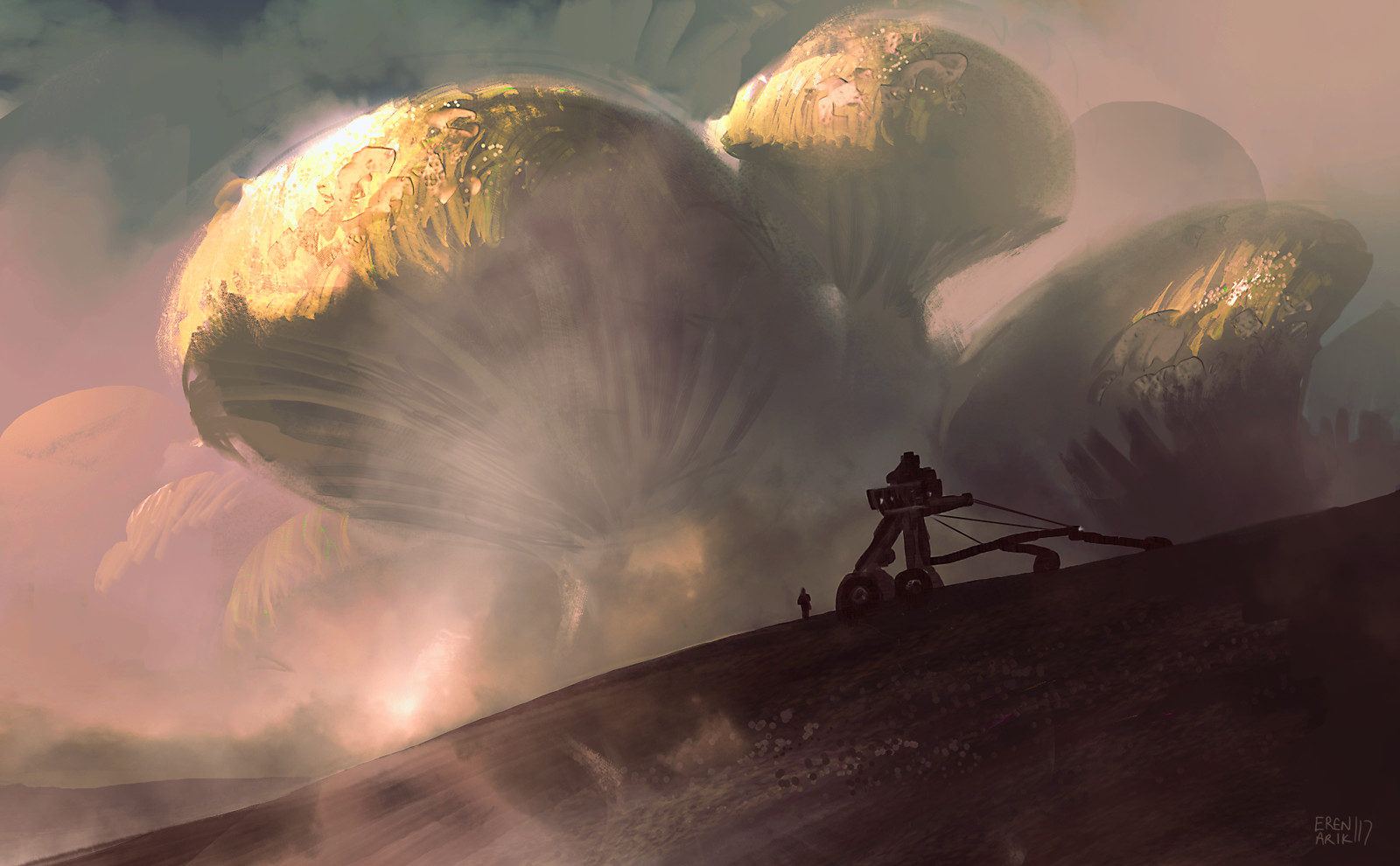eren-arik-fungus.jpg