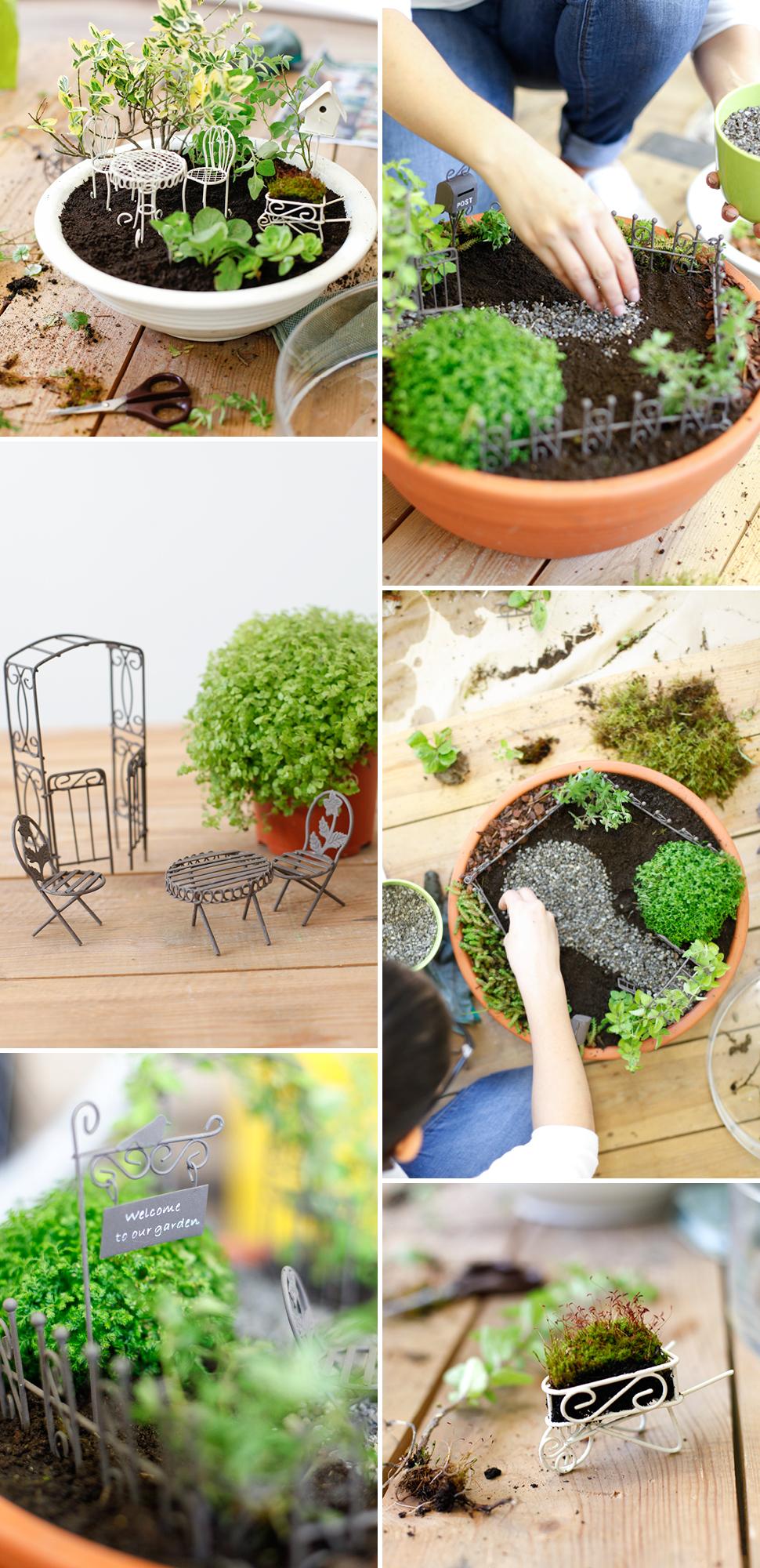 Am Schnellsten Mini Garden