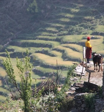 Langtang villager on the way to base camp