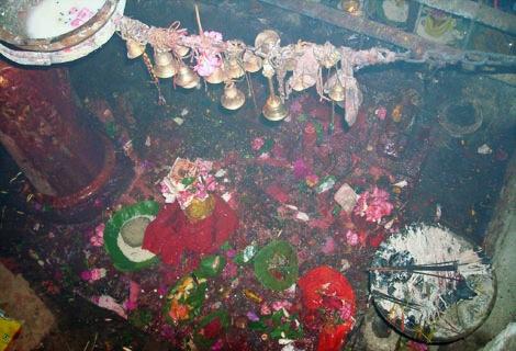 inside-temple-premises.jpg