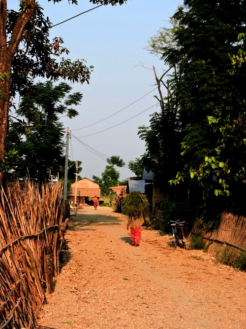 chitwan-man.jpg