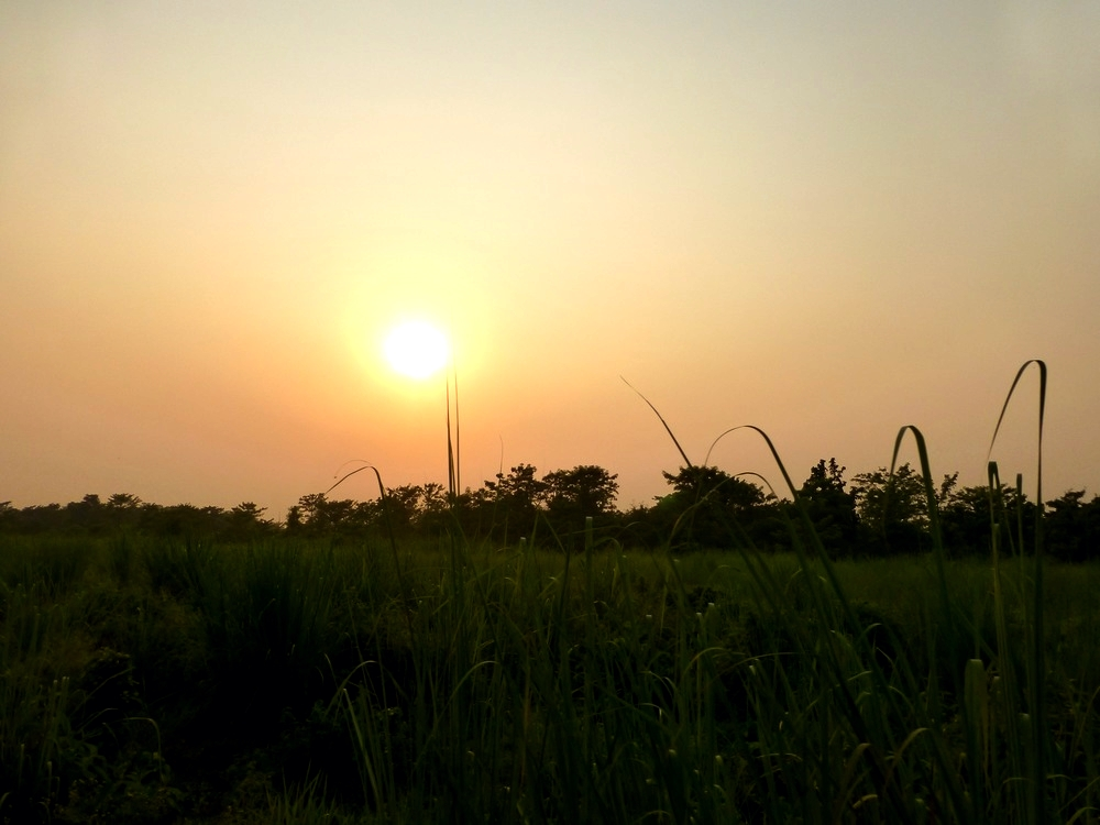 chitwan-sun.jpg