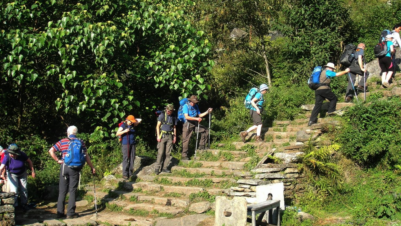 Ghorepani - Poon Hill_Trek_Team_Adventure_Alternative_Nepal.jpg