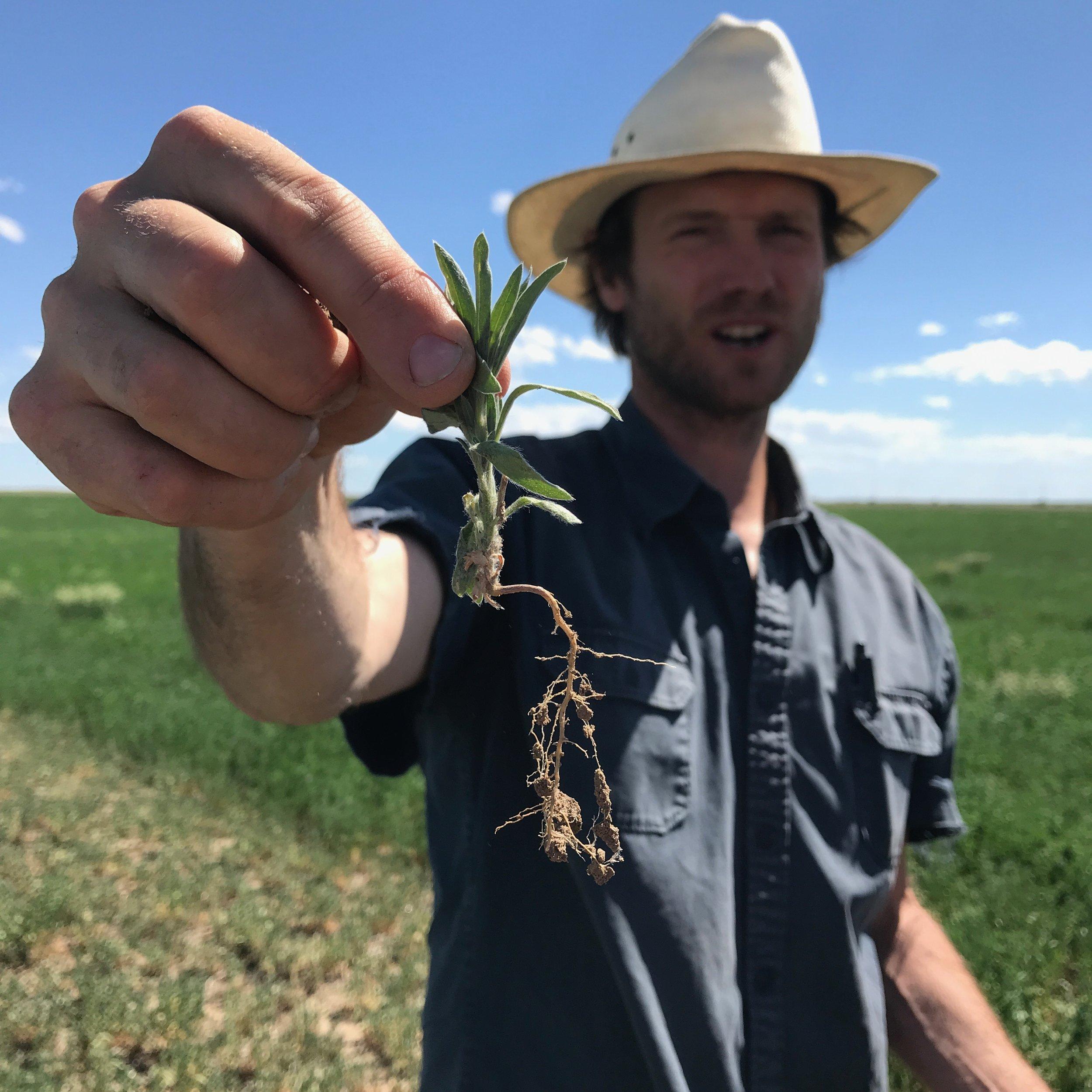 Clark Harshbarger - Director of Regenerative Agriculture
