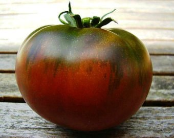 CARBON     Medium Black    Tomato