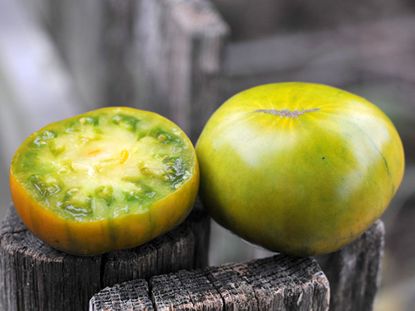 CHEROKEE GREEN    Medium Green Tomato