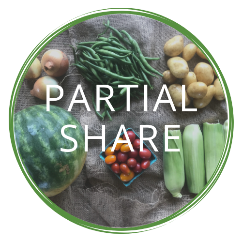 full partial share (21).png