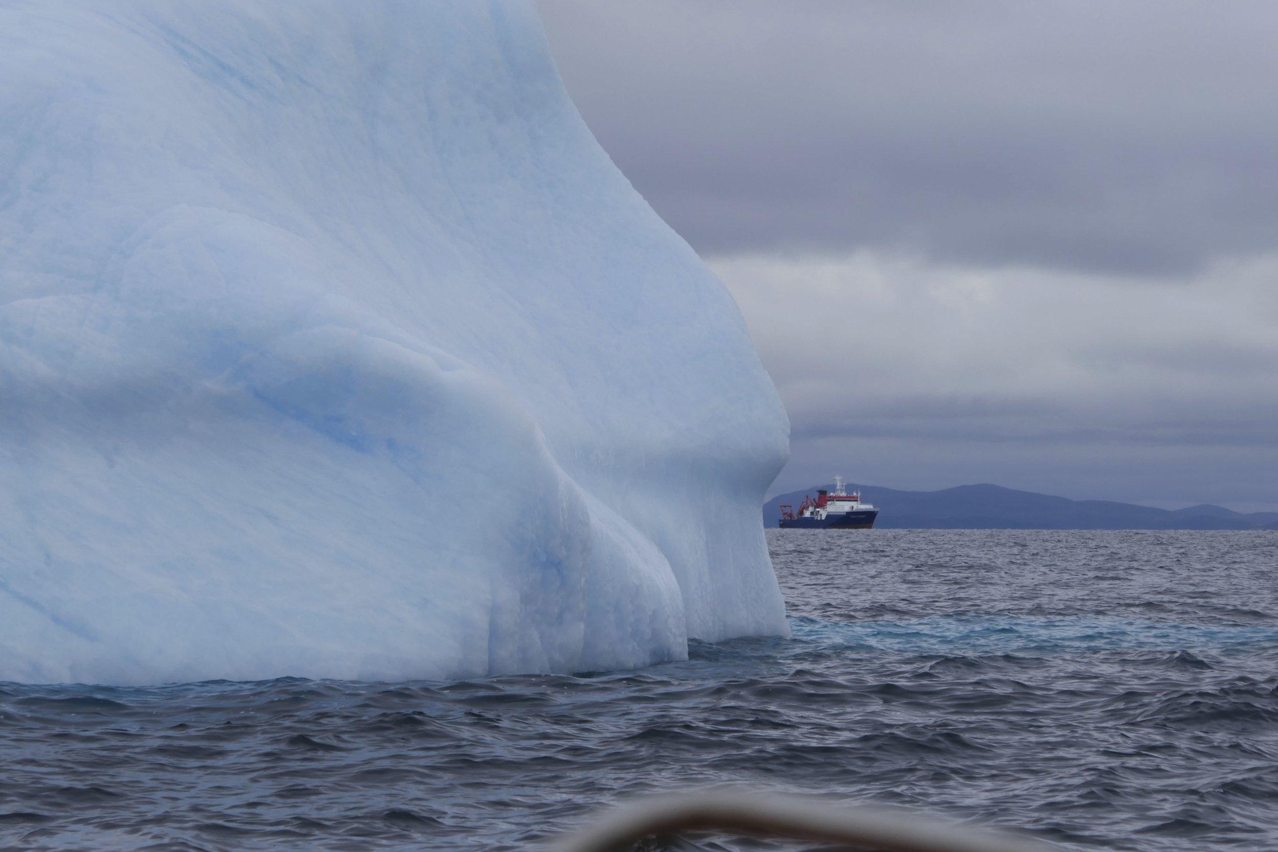 shipberg - 1.jpg