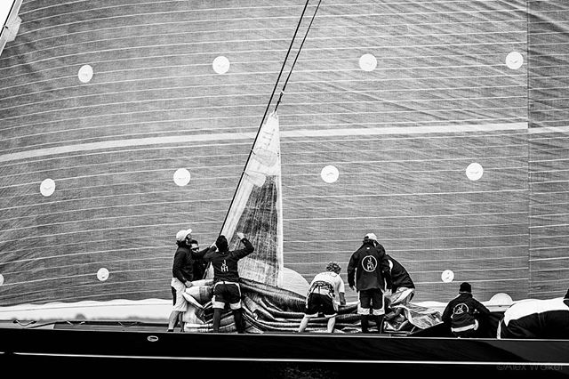 J-Class yacht Lionheart - Falmouth, UK. #yacht #racing #jclass #sailing • • • • • #sails #boats #luxury #sea #nautical #sailyacht #falmouth #cornwall #photojournalist #editorial #onassignment #adventure #canonuk #canon300mm #cinematic #cinematography #ocean #superyacht #bnw_guru #bnw_society #bw_lover #fineart_photobw #bnwsouls #bnwmood #bnw_life #bw_perfect