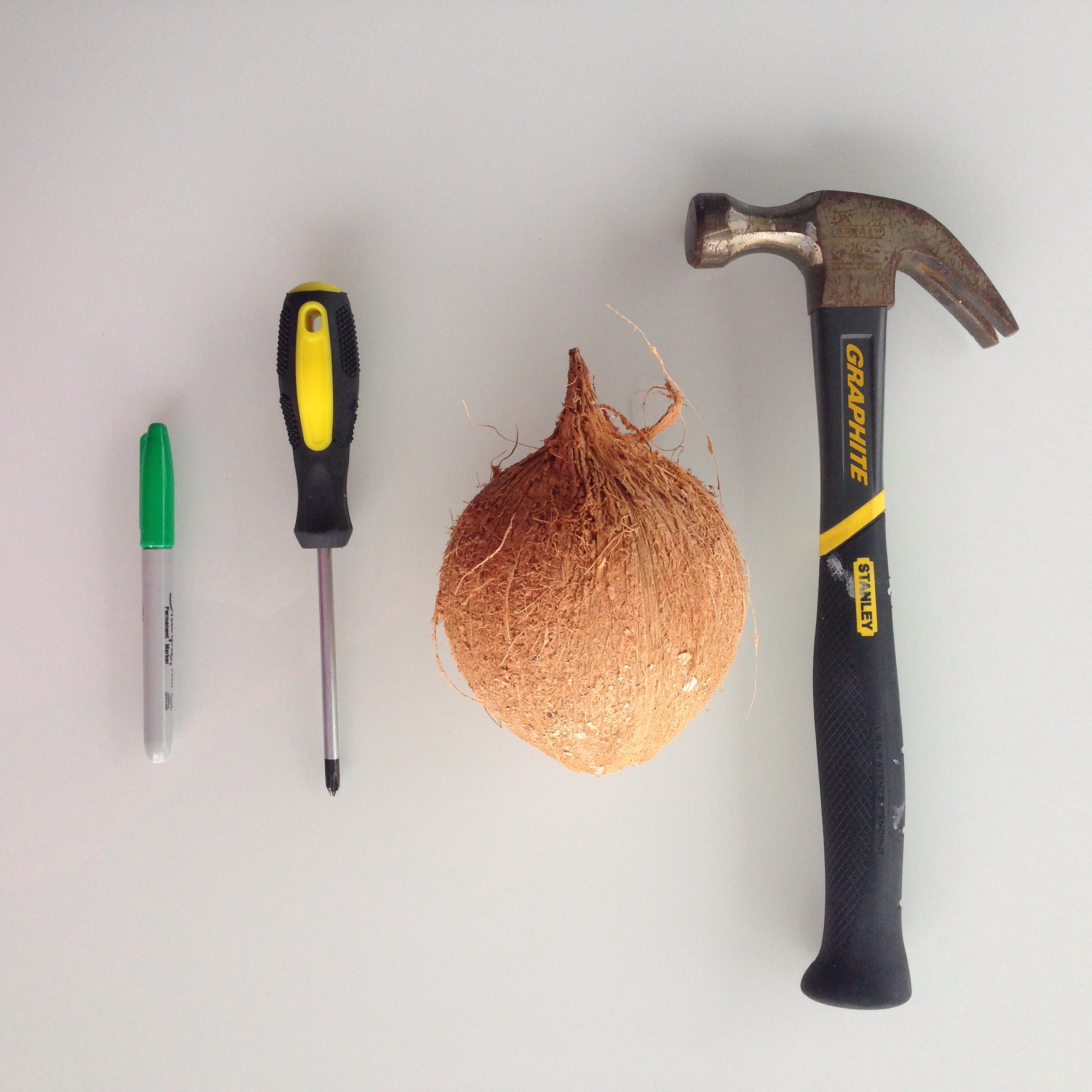 You will need a coconut, a hammer, a screwdriver, and a marker/pencil