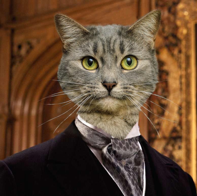 lordcat.jpg