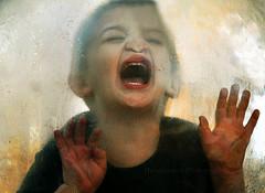 the scream.   Image Credit: Hammonton Photography