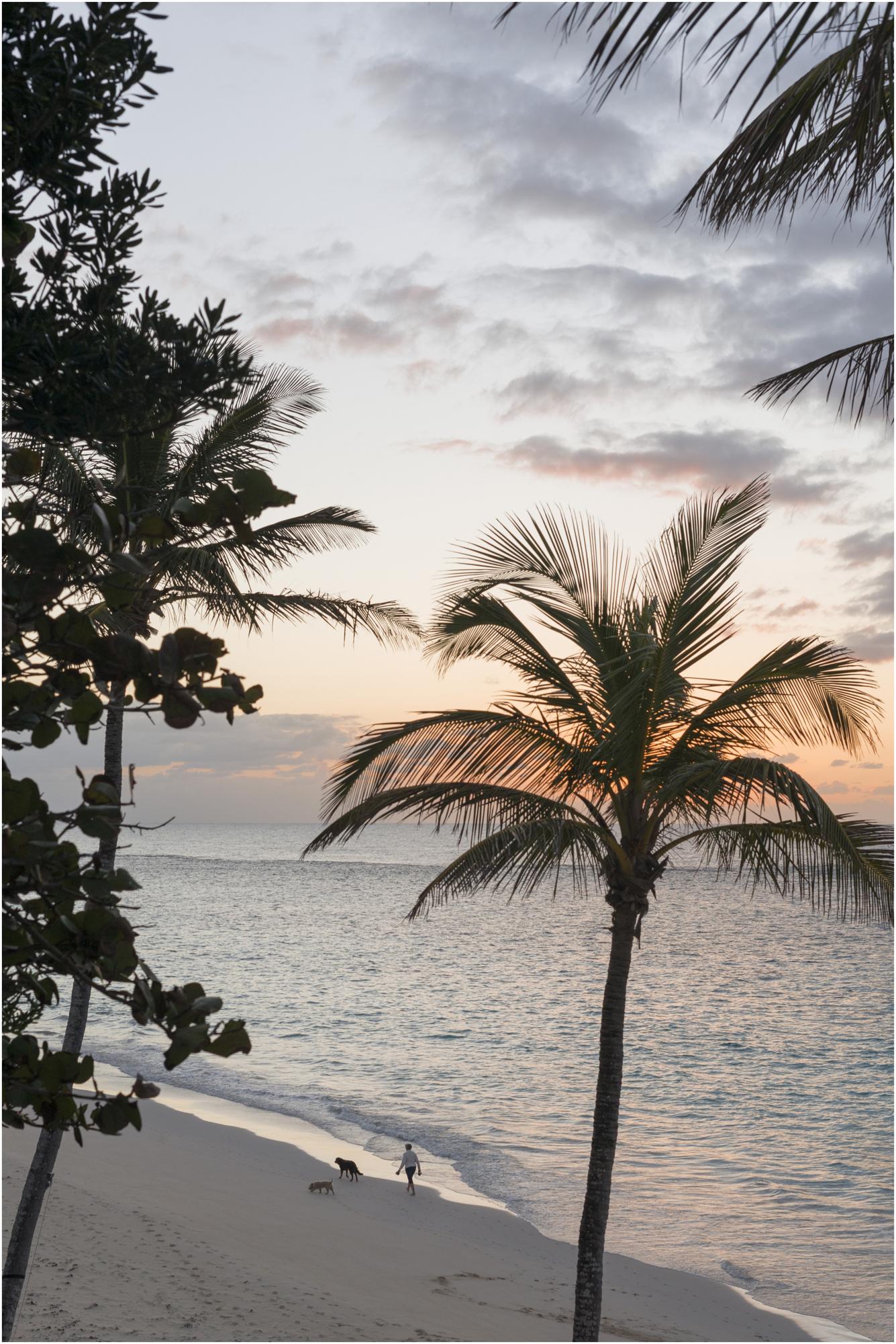 ©FianderFoto_Coral Beach_10.jpg