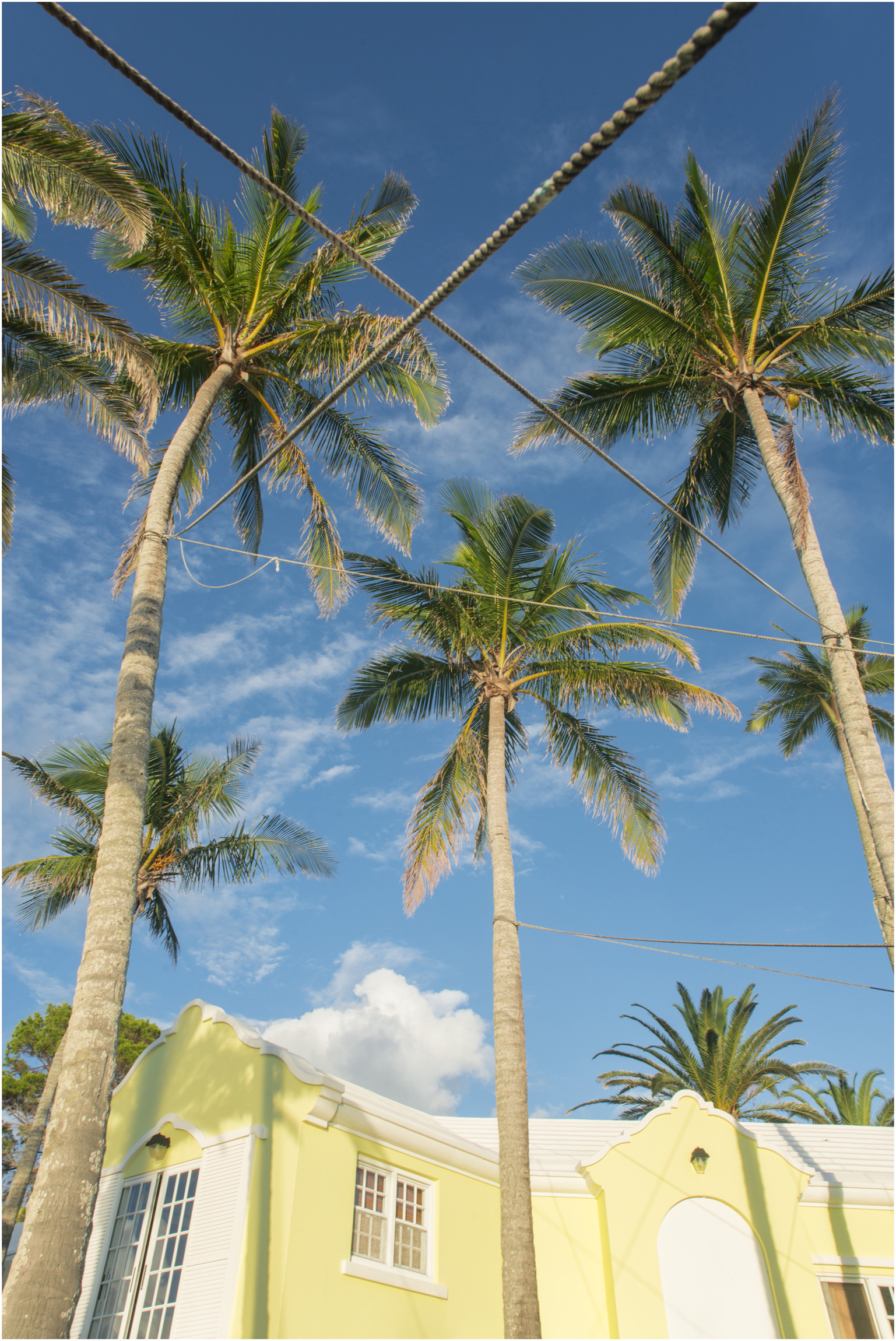 ©FianderFoto_Architecture_Bermuda_Palomera_021.jpg