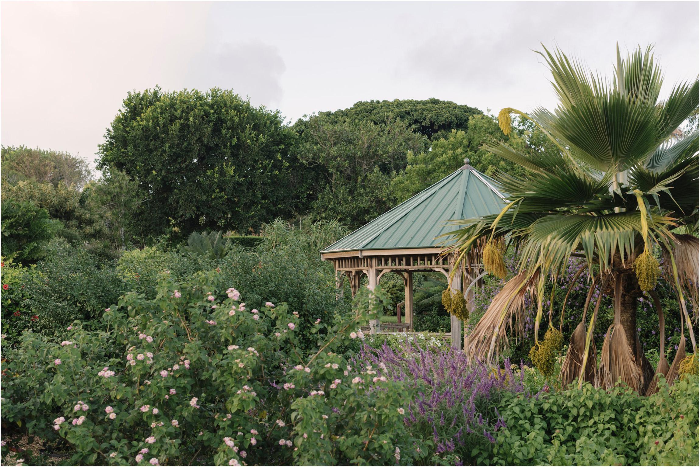 ©FianderFoto_Bermuda Family Photogarpher_Botanical Gardens_Amaro_004.jpg