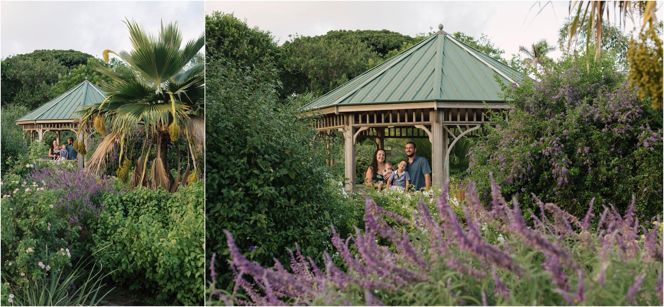 ©FianderFoto_Bermuda Family Photogarpher_Botanical Gardens_Amaro_006.jpg