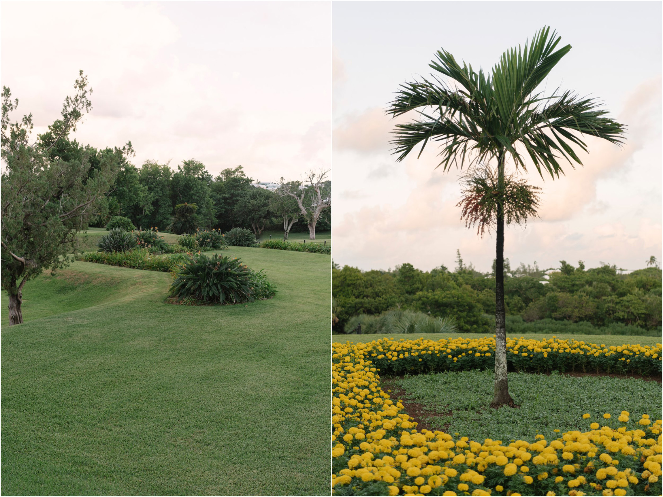©FianderFoto_Bermuda Family Photogarpher_Botanical Gardens_Amaro_013.jpg