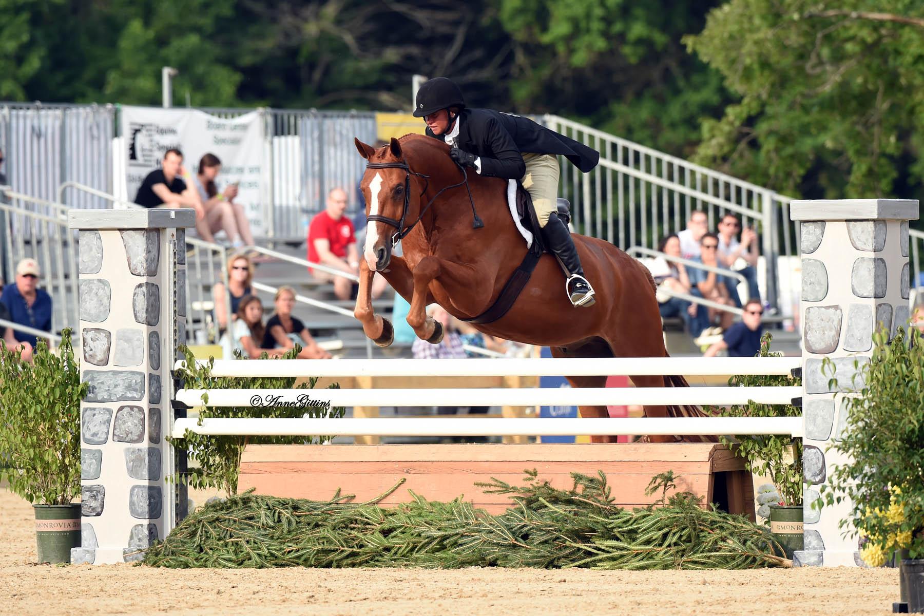 Jennifer Alfano and SBS Farms' Jersey Boy