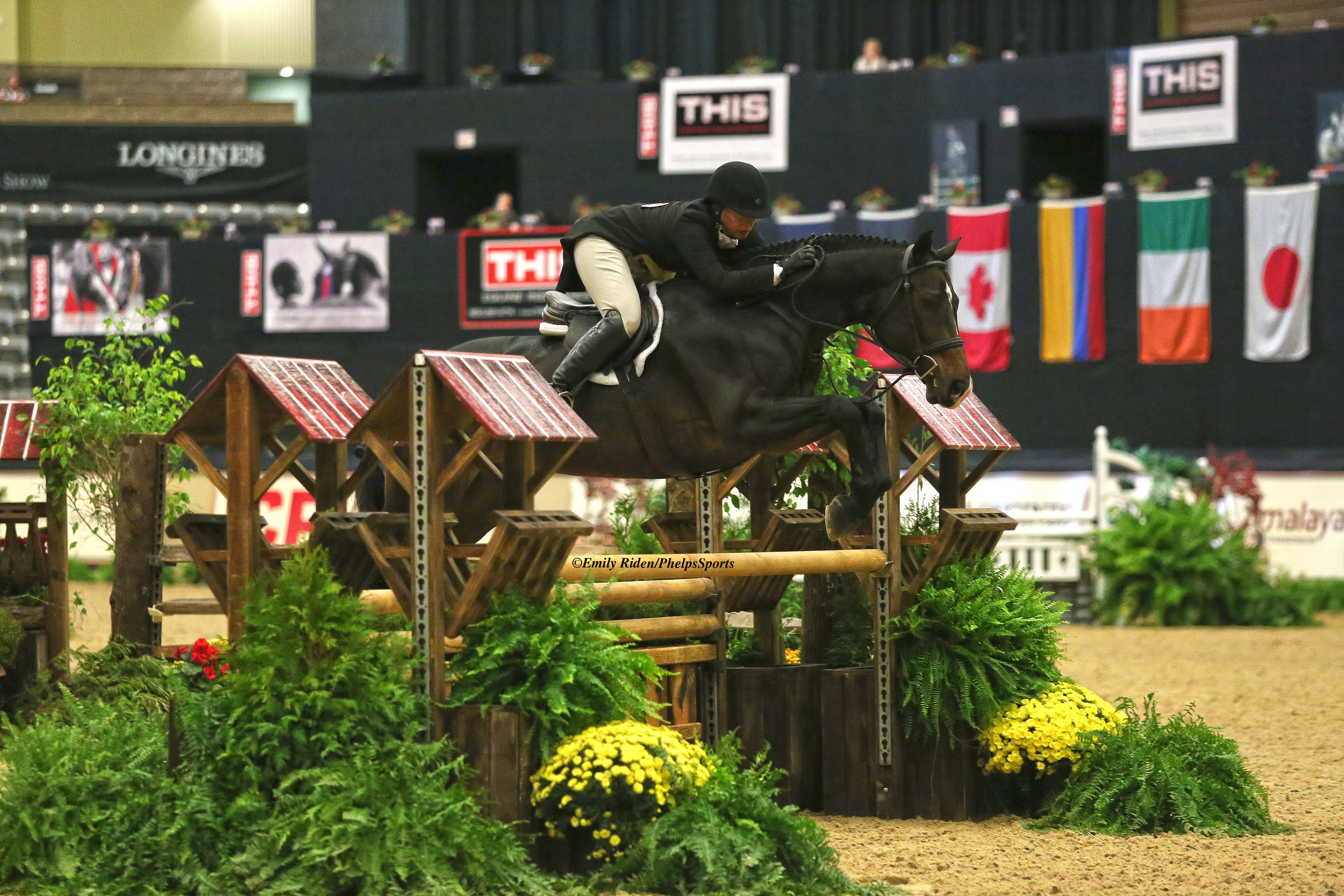 Jennifer Alfano and Candid were Second Year Green Working Hunter champions at the CP National Horse Show