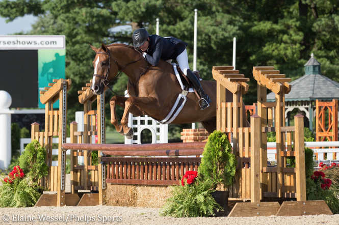 Scott Stewart and Playbook competing in the 2017 Platinum Performance/USHJA Green Hunter Incentive Championship.