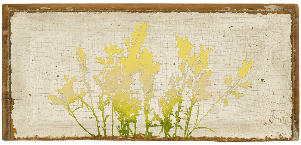 Kim Granstrom,  Wild Flowers (Toad Flax) , Original painting - acrylic on found wood panel, 18 1/2 by 8 1/2 inches