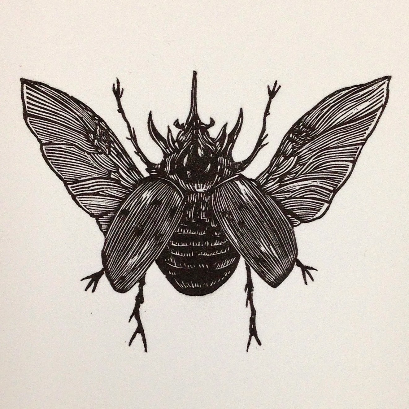 Final print of the Rhinoceros Beetle.