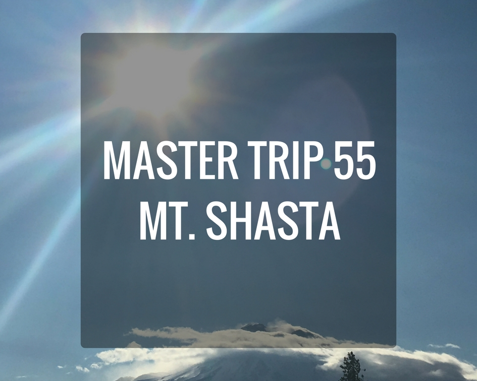 MASTER TRIP 55.jpg
